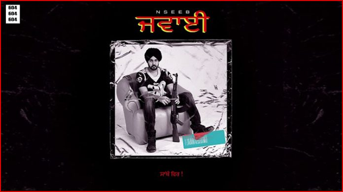 Jawayi Lyrics - NseeB