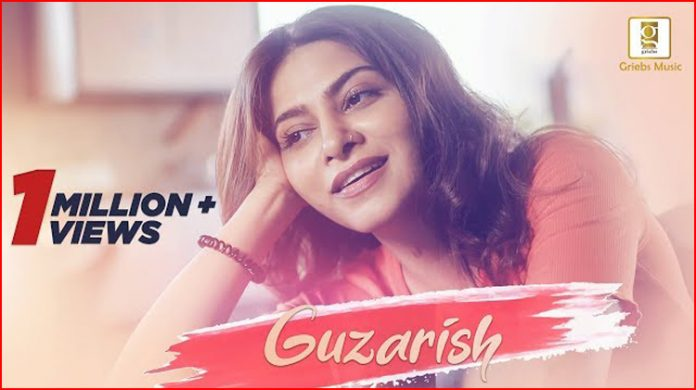 Guzarish Lyrics - Abhay Jodhpurkar