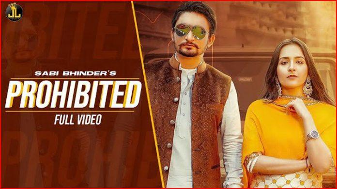 Prohibited Lyrics - Sabi Bhinder