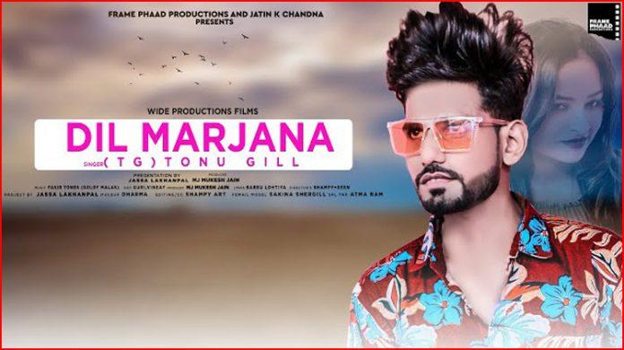 Dil Marjana Lyrics - Tonu Gill