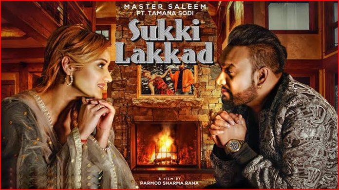 Sukki Lakkad Lyrics - Master Saleem